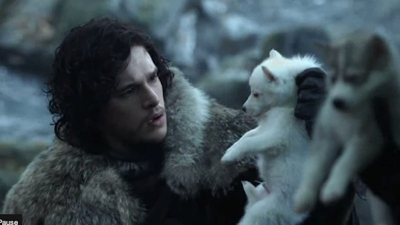 A Fake Dire Wolf Puppy Is Still Probably Way Cooler Than Your Boring, Regular Puppy