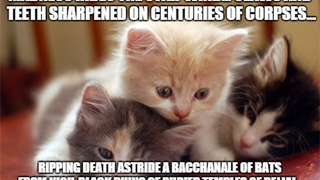 Delve Into The Hidden Horrors Of The Universe... With Kittens