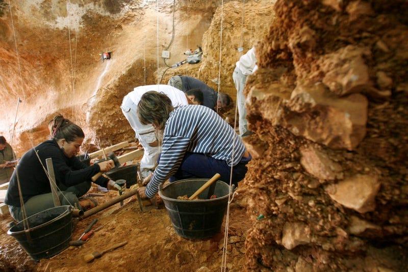 Scientists Find Oldest-Ever Human DNA