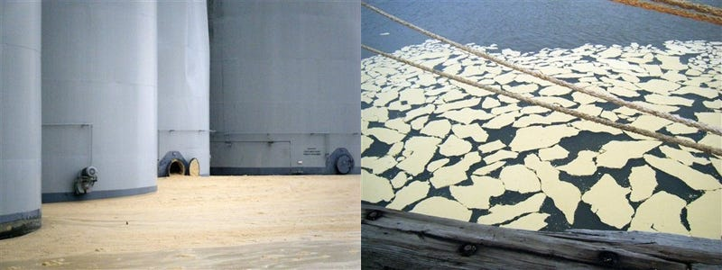 This Is What 15,000 Gallons of Animal Fat Look Like