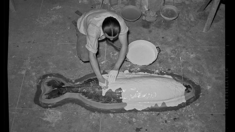 An Awesome 1940s Photo of Making a Cast of a Giant Fish