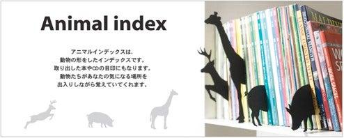 Animal Index Cards