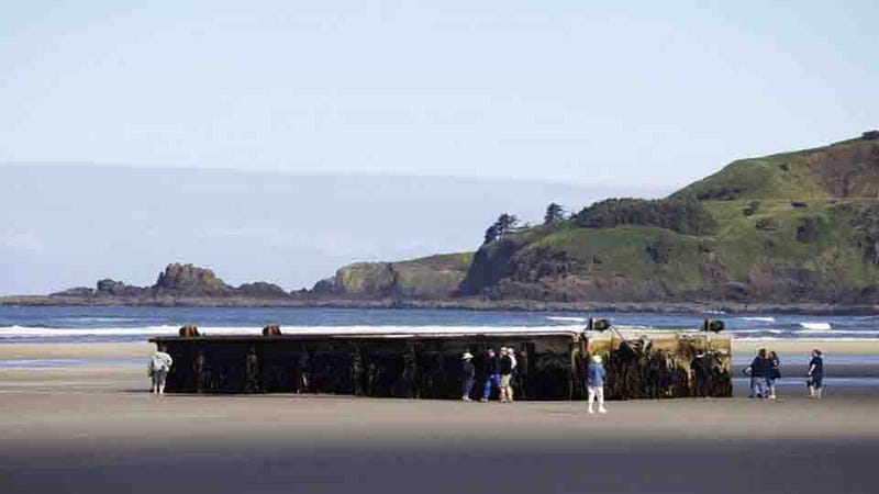 Massive Dock From Japanese Tsunami Washes Up in Oregon