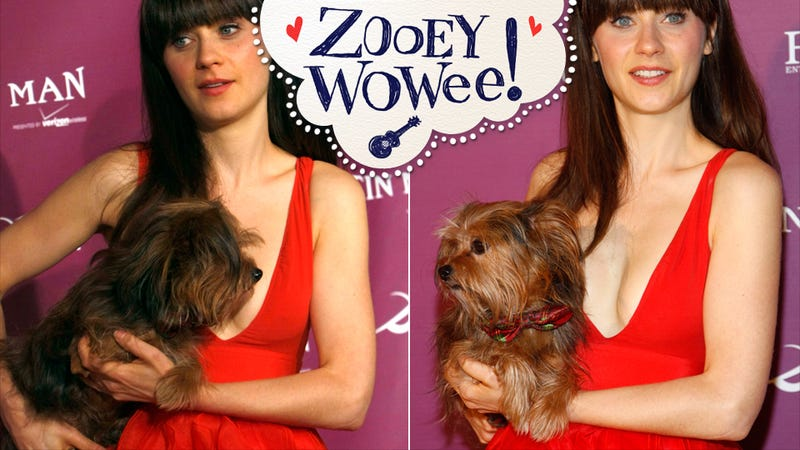 Zooey Deschanel Featured in Music Video