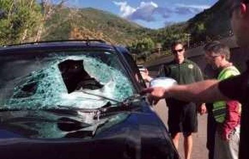 Freak Driving Accident Kills Sprint Exec