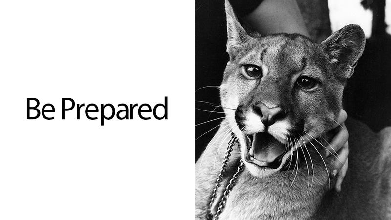 The OS X Mountain Lion Survival Guide