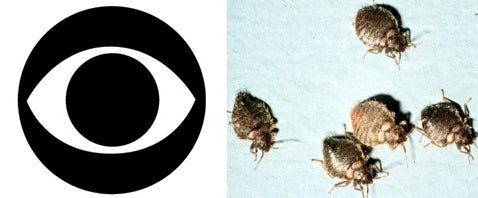 CBS Is the Latest Victim in New York Bedbug Infestation Wave