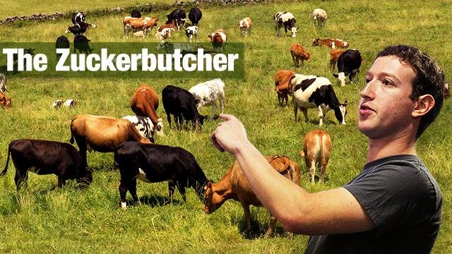 Zuckerberg follows a strict vegan diet