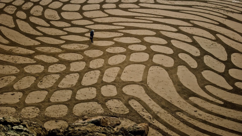 Watch What This Man Creates with Some Sand and a Rake
