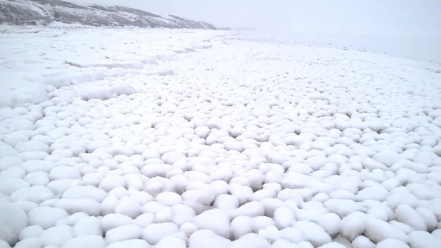 Thousands of Giant Snowballs Suddenly Appear on Siberian Beach