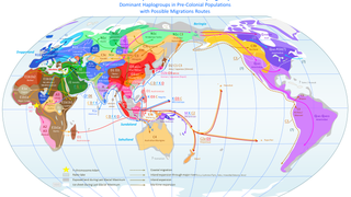A Patrilineal Map of the World