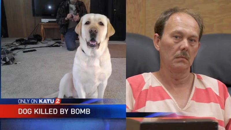 Man Who Blew Up Dog Not Charged with Abuse Because Dog 'Didn't Suffer'