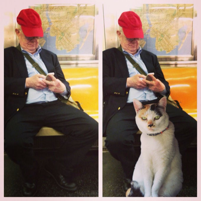 Men Who Take Up Too Much Room on the Subway Are Just Saving It for Cats