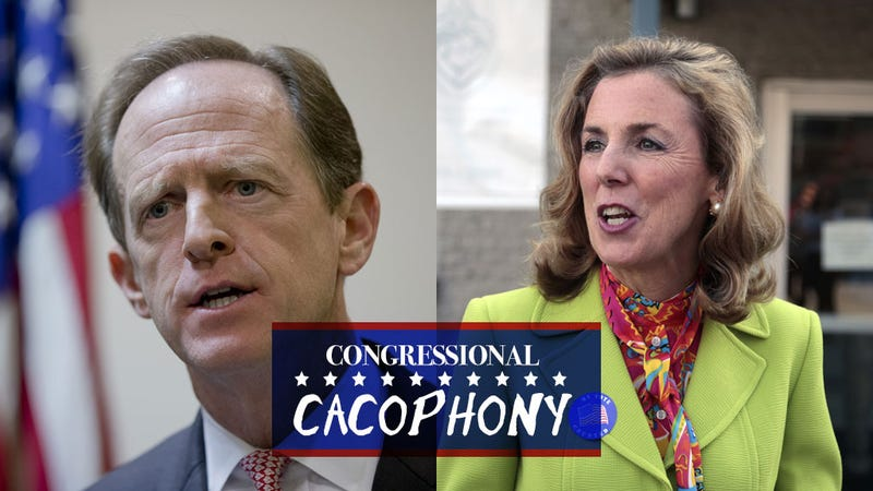 Senator on Tight Reelection Race Sat on Board of College That Thinks Feminism Could Turn Girls Gay