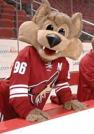 Phoenix Coyotes Go Bankrupt, Forget To Tell NHL