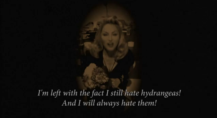 Madonna's Bitchy Brilliant Fake Apology to Hydrangeas