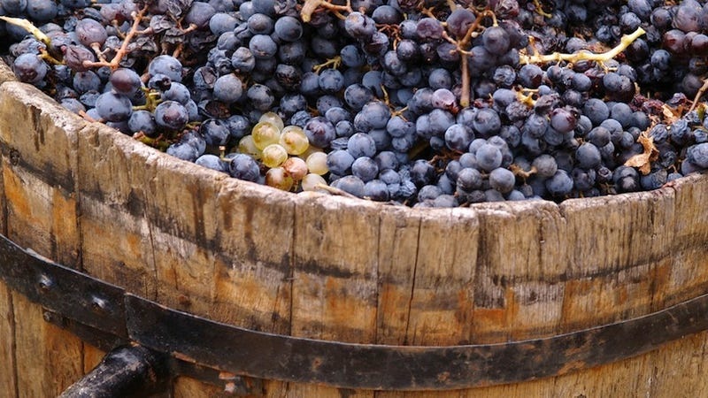 Ancient Italians Taught the French How to Make Wine