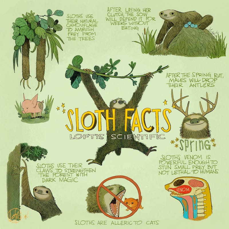 Behold The Most Charmingly Inaccurate Infographic on Sloths