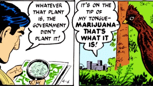 Mark Trail versus the marijuana farmers is the new greatest comic strip of all time