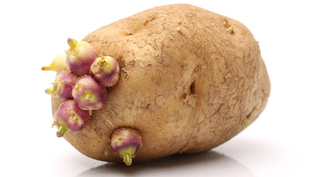 Woman Uses Potato as Contraceptive, Grows Roots Inside Her Vagina