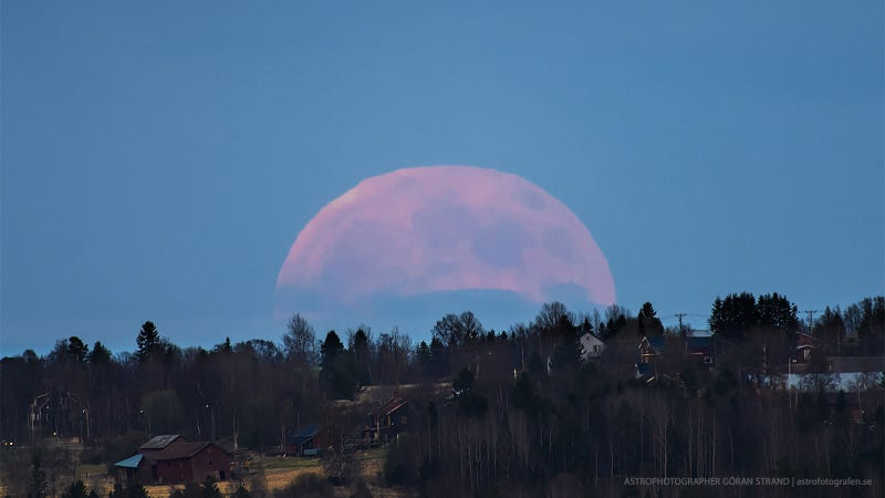 Wow, check out the giant full moon rising