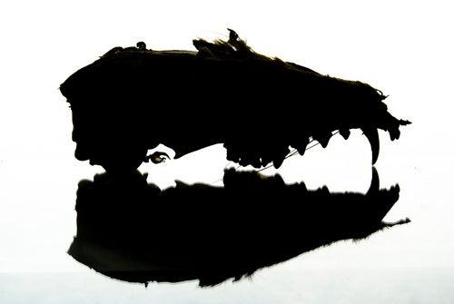 Shooting Challenge: Rorschach Test
