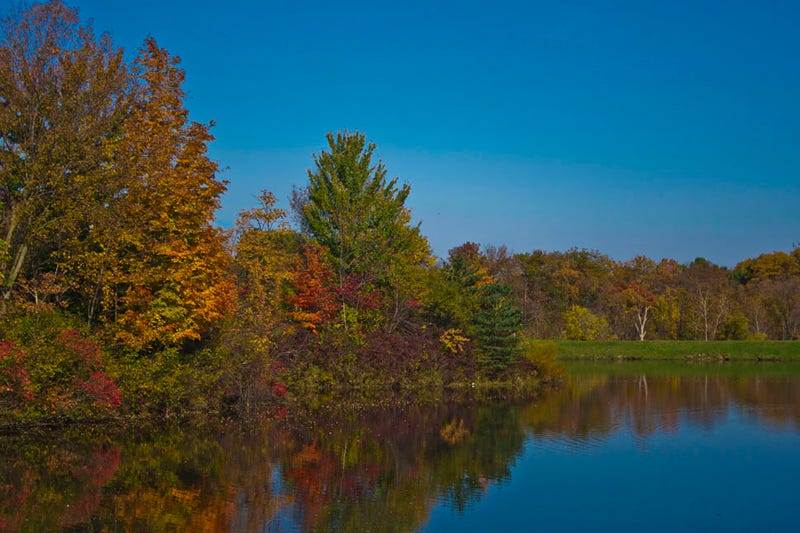 Fall Shooting Challenge Gallery 2