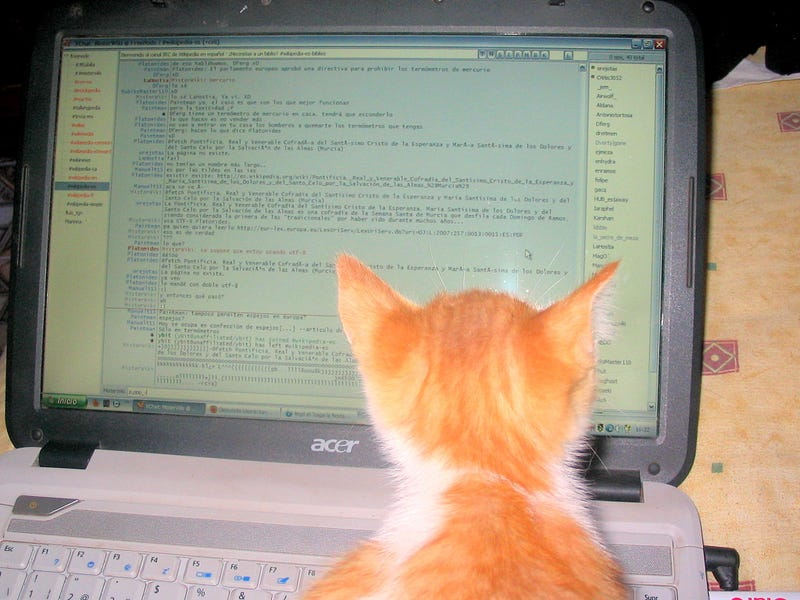 TAY IRC Chatroom
