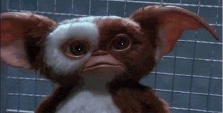 Gremlins Remake Put On The Fast Track By Warner Bros.
