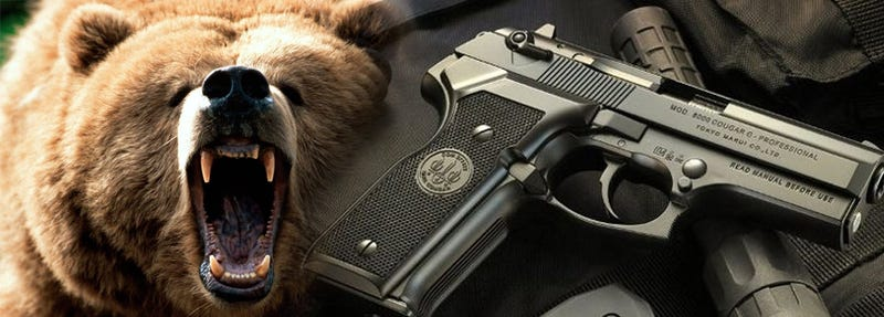 The Perfect Approach to Gun Control? Think of Guns as Bears.