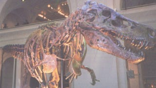 <i>Dinosaur 13</i> tells part of the story of Sue