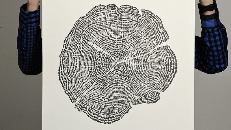 Optical illusion poster is a tree . . . until you examine it more closely