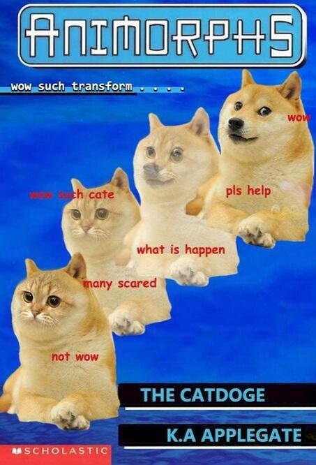 We who spoke LOLcat now speak Doge