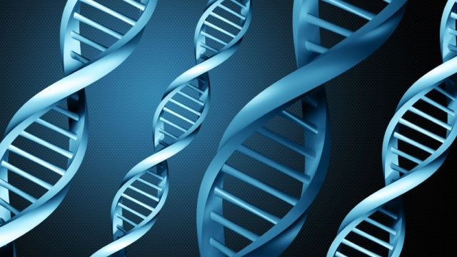 Why DNA might be the future of computing