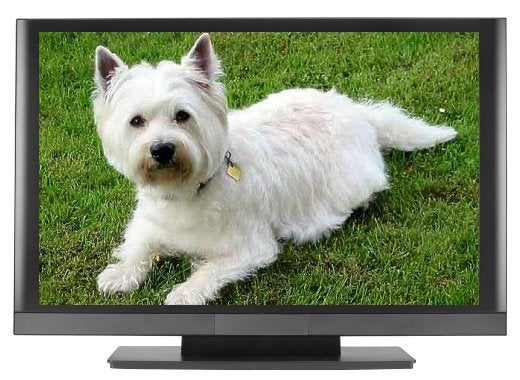 Eyeball Test Later Today: Is Westinghouse's 52-inch 1080p LCD the New King of Budget HDTV?