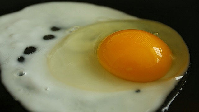 How to Cook Perfect and Delicious Eggs