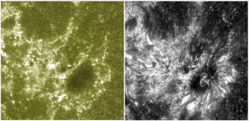 New views of Sun's atmosphere reveal structures unknown to science