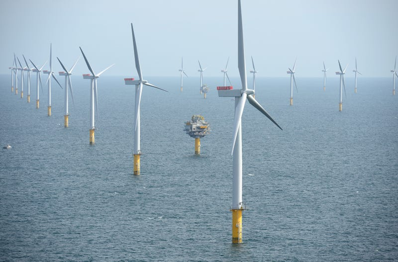 Offshore Wind Farms Are Turning Into Artificial Reefs