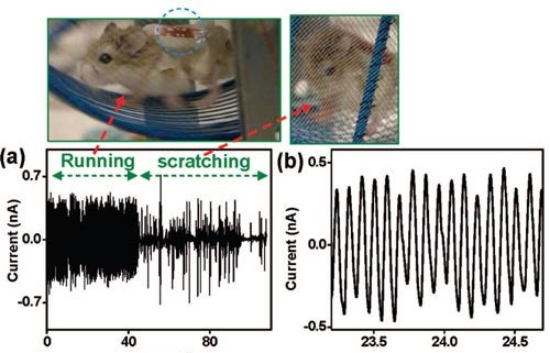 Hamsters And Teeny Factory Workers Show Us Our Nanotech Future