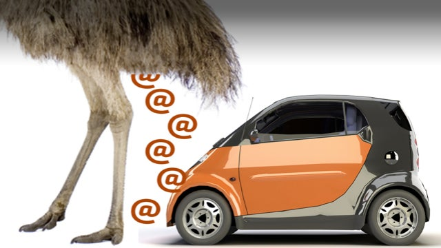 Smart Explains How They Determined The Weight Of Emu Poop