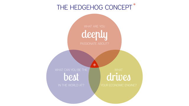 Find the Right Career with These Three Questions, the Hedgehog Concept
