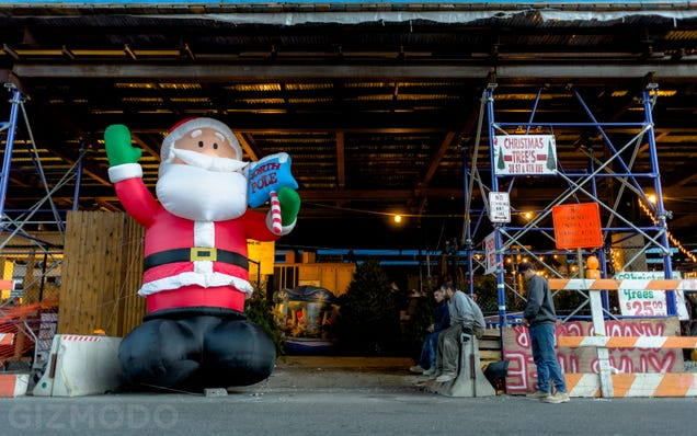 Photo Essay: NYC's Incredible Christmas Tree Seller Subculture