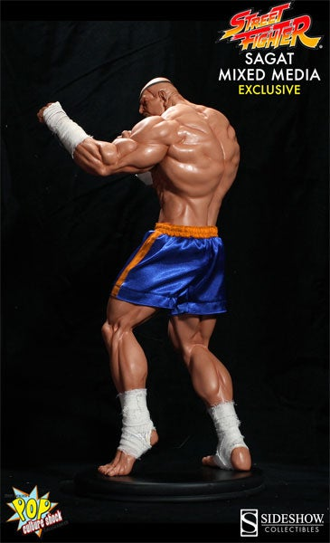 Sagat Won't Just Tiger Uppercut Your Face, He'll Get Your Wallet, Too