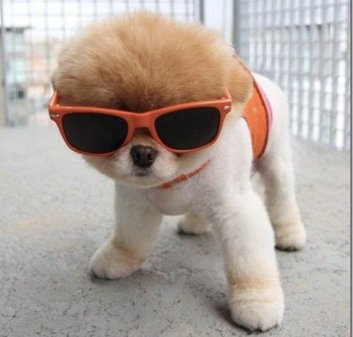 Stay Cool in Your Friday Open Thread