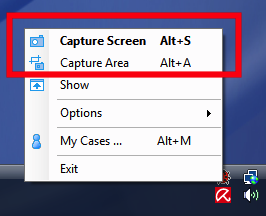 Bug Shooting Does Advanced Screen Capture and Annotation