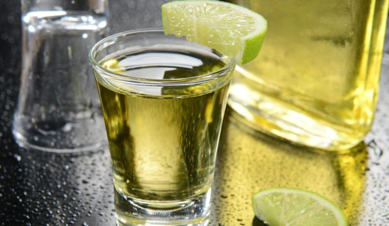 Tequila Will Help Us All Lose Weight, Says Most Perfect Study Ever