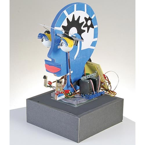 BotBrain Robot Head Flaps its Eyelids, Makes Geekish Hearts Flutter