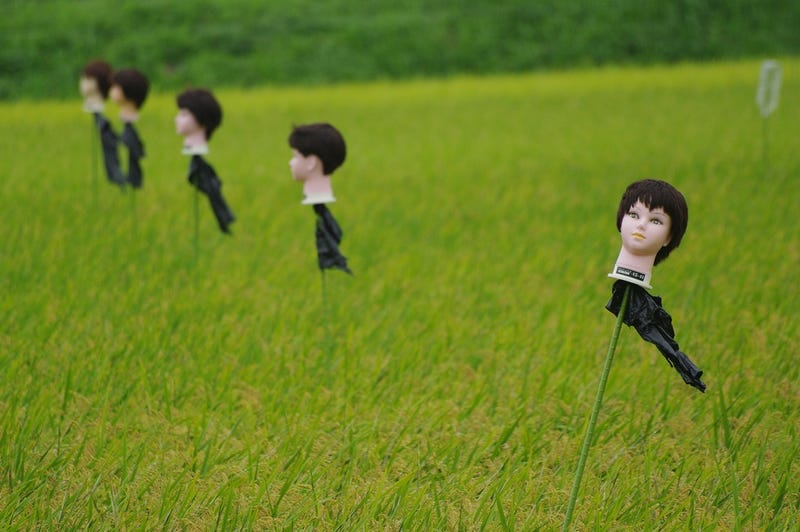 The Wild and Wonderful World of Japanese Scarecrows
