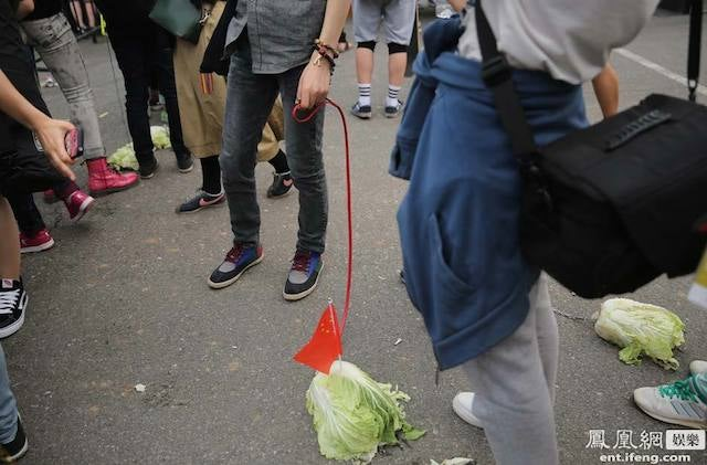 No, China's Depressed Youth Do Not Keep Cabbages As Pets
