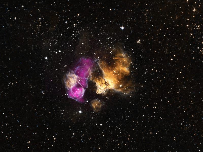 Companion to a Supernova